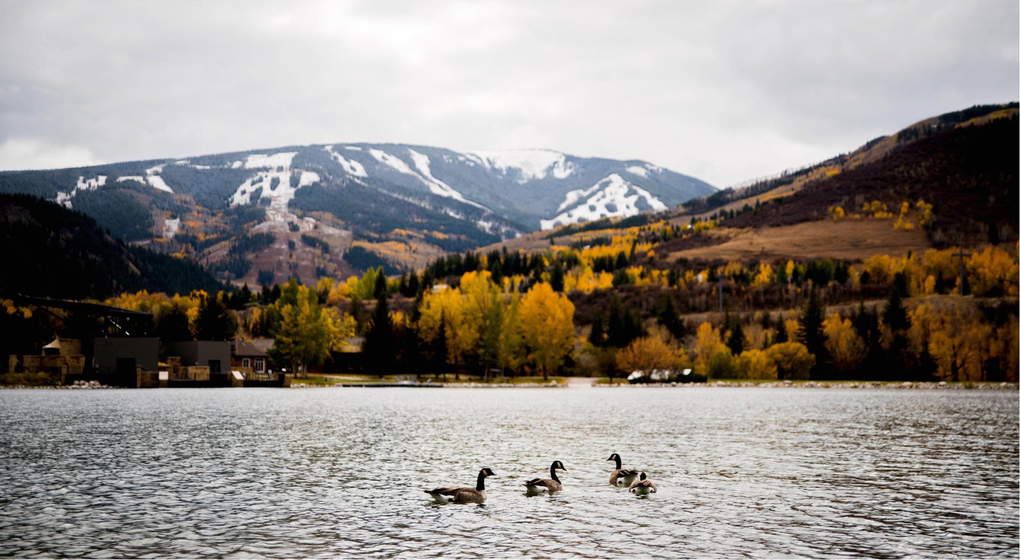 Beaver-Creek-Fall-Nottingham-Lake